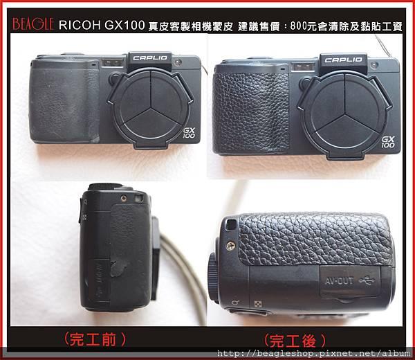 DM-GX100