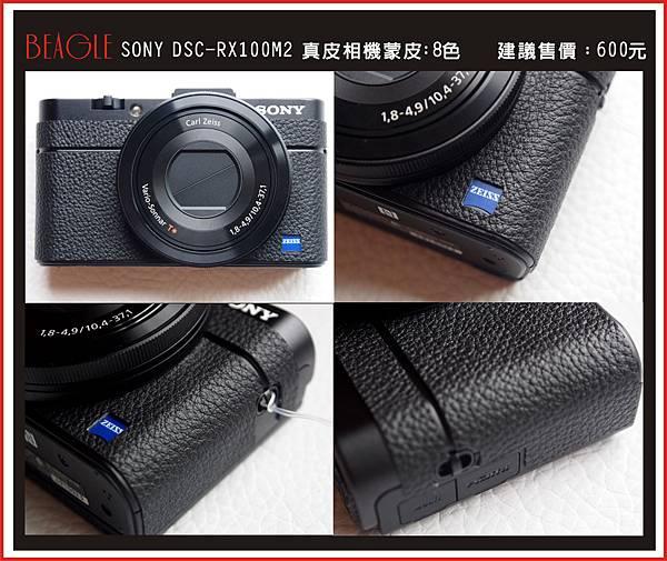 DM-RX100M2.JPG