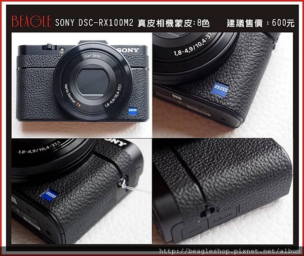 DM-RX100M2