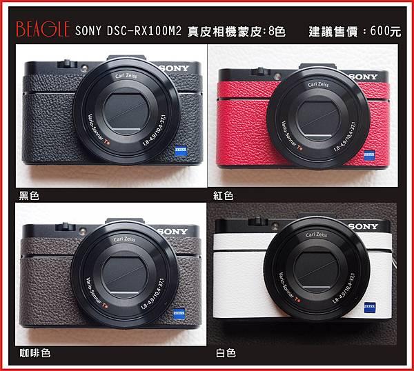 露天DM-RX100M2-1.jpg