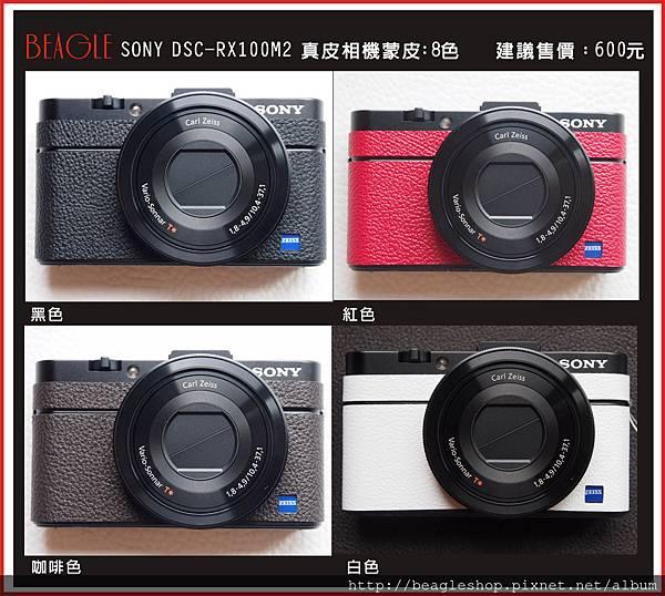 露天DM-RX100M2-1