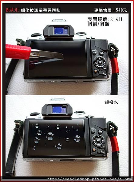 DM-RX100-2