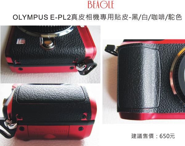 DMepl2-2.jpg