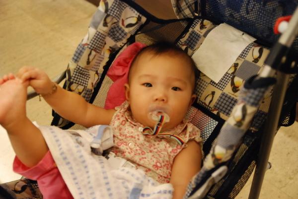 菁蓮學姊的小女兒