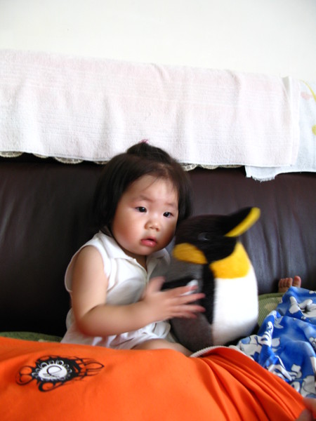 新寵兒小企鵝
