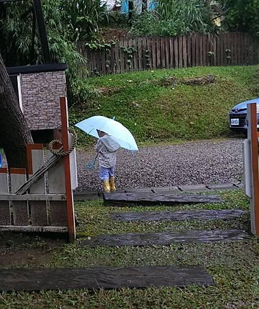 阿笛撐雨傘穿雨鞋出去散步
