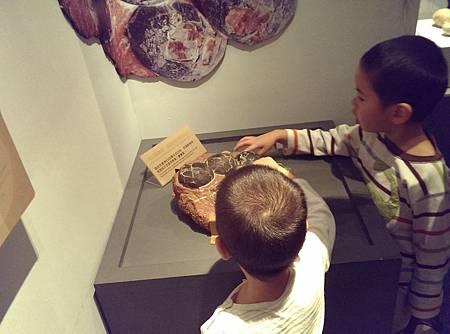 恐龍蛋特展,可以觸摸的恐龍蛋化石