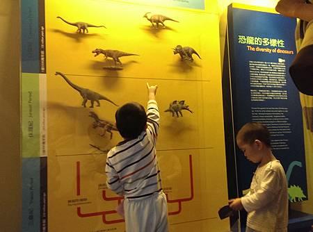 每次經過這樣的各種恐龍的牆面,都要停很久