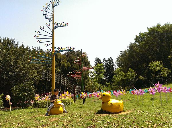 風鈴、開心坐上小鴨的阿寶