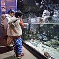意外有趣的水族館