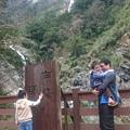 白楊步道目前開放的終點就到白楊瀑布