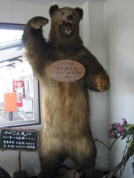 IMG_2727 熊.jpg