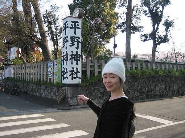 IMG_4780 來日本就是要看櫻花,第一站:平野神社.JPG