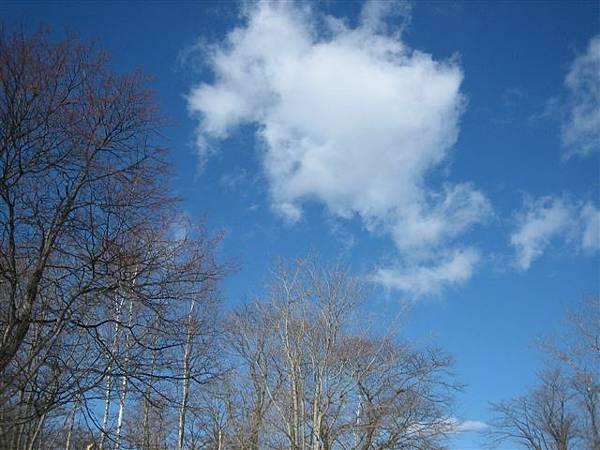IMG_2718 天氣很好.