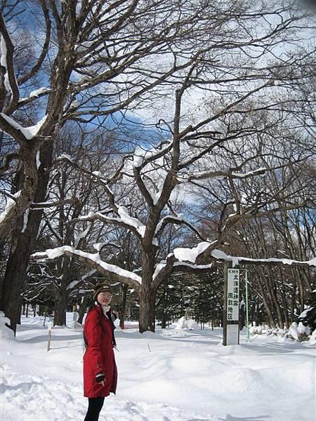 IMG_3559 隔天一早到北海道