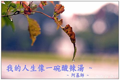 j1IMpCrBDMJuW_18T1sD8A.jpg