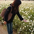 有意境的賞花