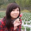 抹醬買的草莓鈴鼓