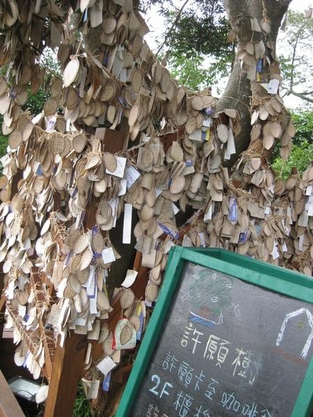 樹上掛滿了許願卡