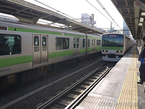 P1380589.JPG