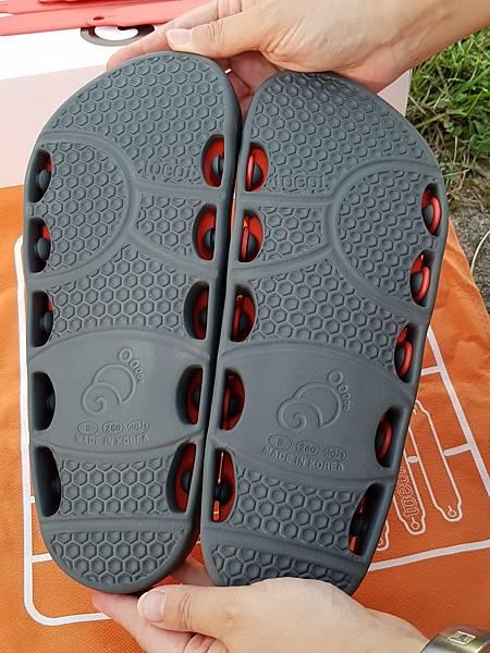 拖特鞋_170901_0045.jpg