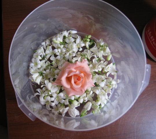 老公送的花.JPG