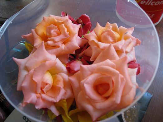 老公送的花4.JPG