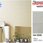 TWP9182-立體白磚