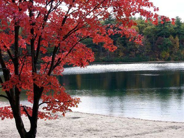 2005 Calender封面梭羅湖邊散記華頓湖.jpg