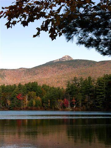 十一月新罕布西希5州White Mountain.jpg
