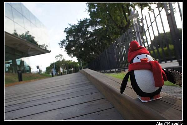 10..花博公園.jpg