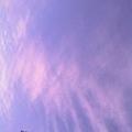 輔大的天空