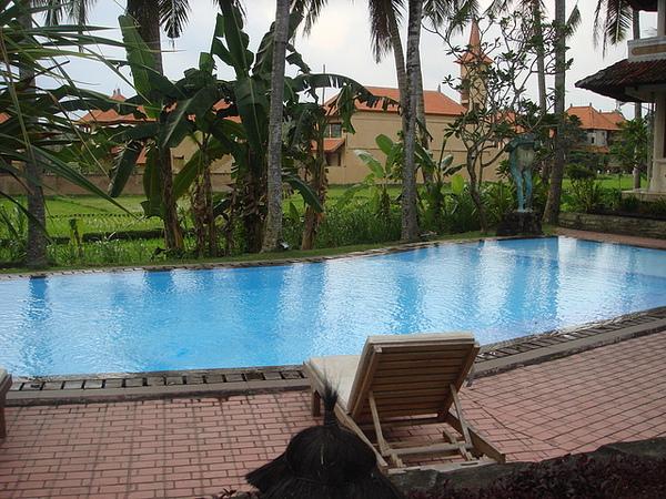 供客人使用的游泳池
