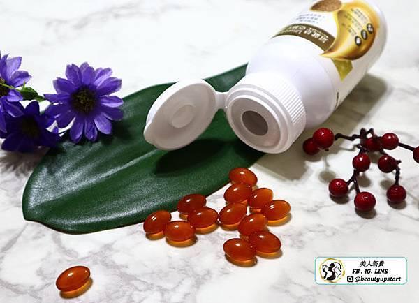 橙姑娘亞麻仁油,補充人體所需omega-3脂肪酸,幫助調整體質,保持精神旺盛的最佳狀態,反應更靈活!PTT熱搜