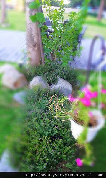 C360_2012-07-20-17-52-59