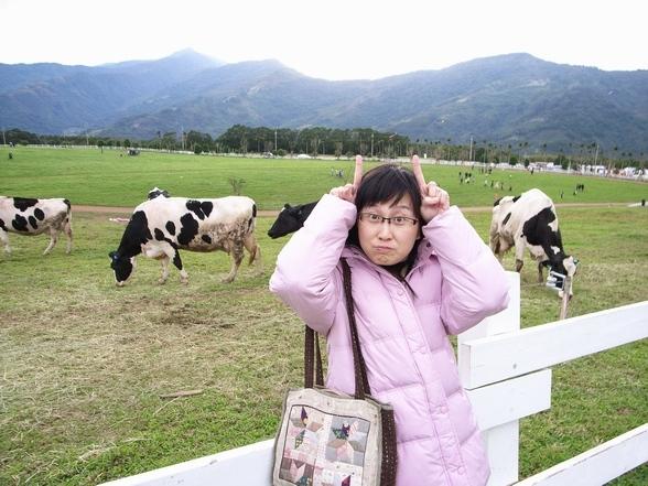 這裡的牛好像沒長角吧?!
