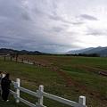 超大的草原