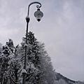 路燈也變白了