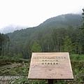 桃芝颱風的災區