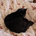 回房驚見Jack在我們床上