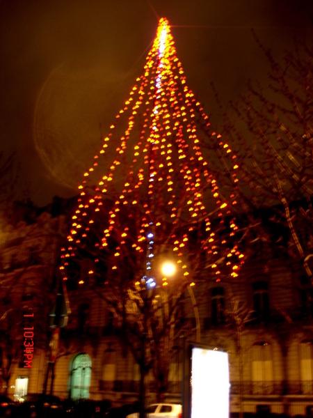 到了聖誕節,香榭大道上的樹都會穿上亮亮的衣服來音節聖誕節~