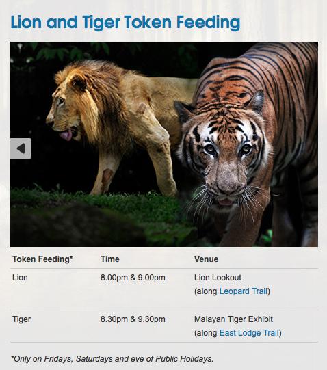night safari 5.jpg
