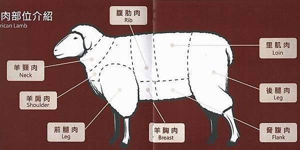 羊肉部位介紹.jpg