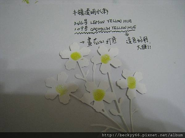 IMG_4937.JPG