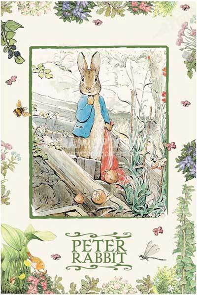 Peter-Rabbit-beatrix-potter-2469227-400-599