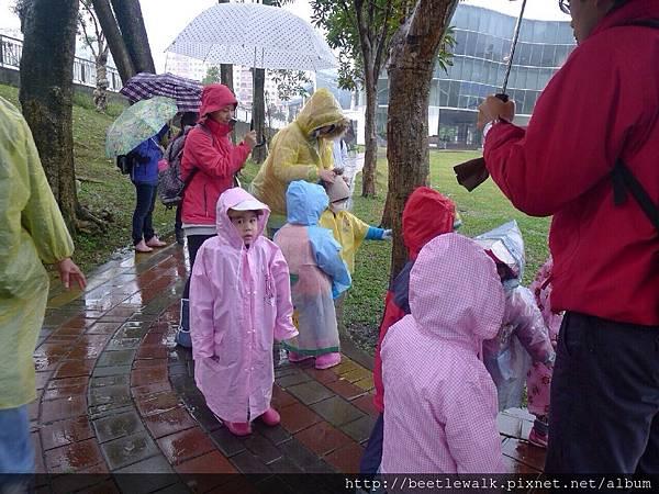 兜兜風 自然步道~雨中的大湖公園