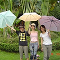 三枝雨傘標