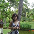 Melia Bali 陽台外view