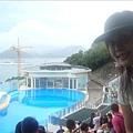 海獅跟海豚秀