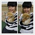 回家又跟愛兔玩!好可愛喔~~~~~~~